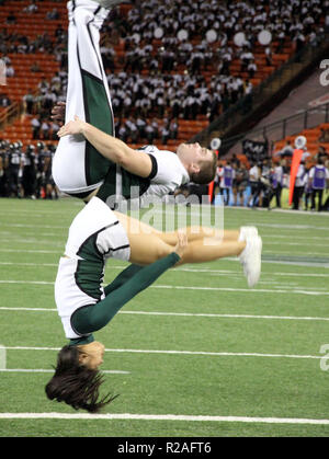 November 17, 2018 - Hawaii cheerleaders perform during a game