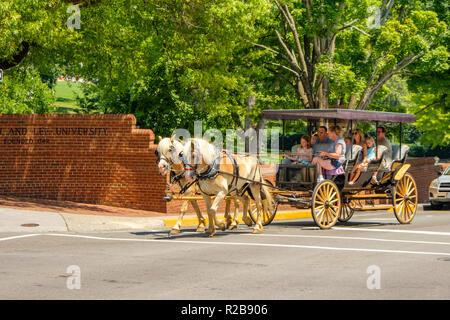 Horse-drawn carriage, Lexington Carriage Company, Lexington, Virginia - Stock Photo