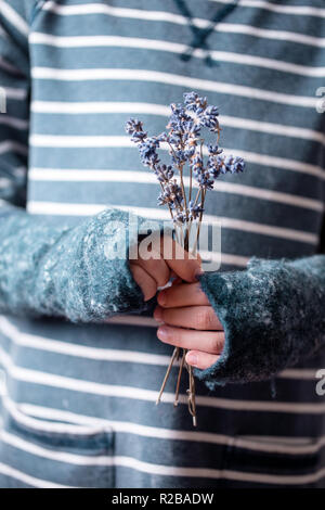 bouquet of lavender in hands