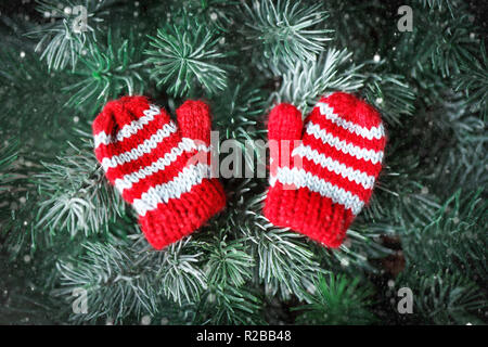Merry Christmas and happy New year. Small knitted mittens on the Christmas tree. - Stock Photo
