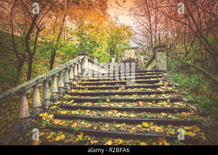 Old staircase covered with fallen leaves in the park in autumn - Stock Photo