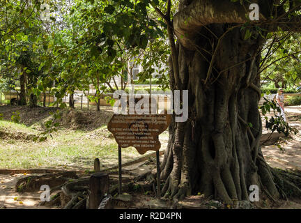 Sign by Magic Tree where loudspeakers drowned the sounds of dying victims in The Killing Fields Genocidal Centre. Choeung Ek, Phnom Penh, Cambodia - Stock Photo