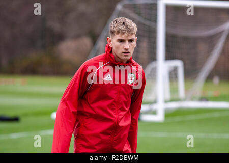 Cardiff, Wales. 15th November, 2018. Wales midfielder David Brooks trains ahead of their upcoming friendly against Albania. Lewis Mitchell/YCPD. - Stock Photo