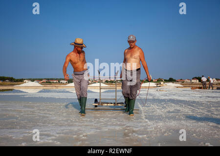 Salt collecting in salt pans in Nin, Croatia - Stock Photo
