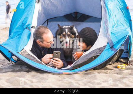 couple looking at the smart phone and have fun inside a tent in free camping on the beach Dog border collie behind them looking at the camera. bright colors and alternative vacation family concept. Wanderlust people - Stock Photo