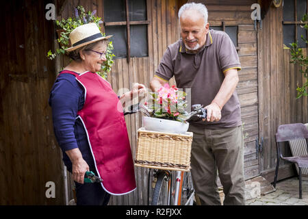 retired adult caucasian couple stay in the jardin at his own home to work on the plants and vegetables. old style bike with them and wood background. life forever together concept for people in love retired - Stock Photo