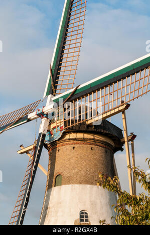 ABBENBROEK, THE NETHERLANDS - SEPTEMBER 23, 2013: The historic dutch windmill 'De Hoop' in Abbenbroek in Holland is standing in de sunlight with its n - Stock Photo