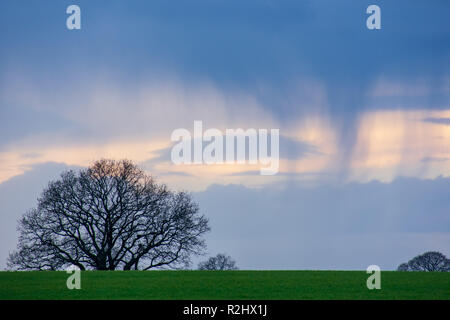 Rain falling from dark clouds in the distance. - Stock Photo