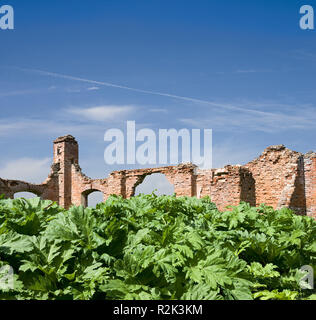 Lithuania, leaves in front of a ruin, Composing,