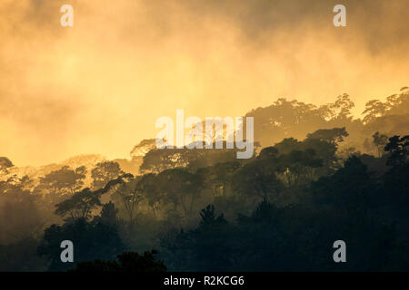 Fog sets in at sunset in the mountains outside Tapachula, Chiapas, Mexico. - Stock Photo