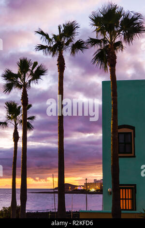 Holiday villa with palm trees in front of evening sky at sunset overlooking the sea. - Stock Photo