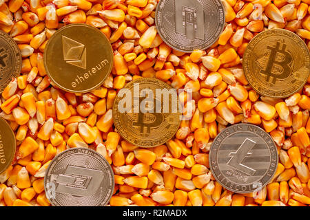 Cryptocurrency borrowed term from agriculture