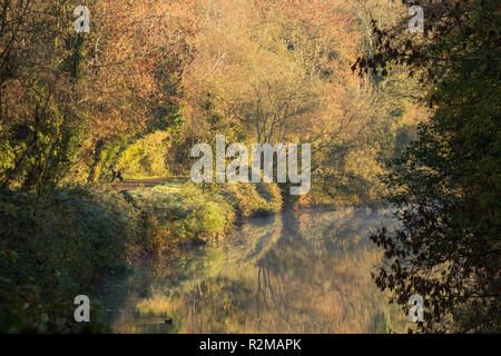 Early morning mist on the River Lagan,  as beautiful autumn colours are brightly lit by morning sunshine. Lagan towpath, Belfast, N.Ireland. - Stock Photo