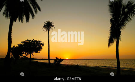Orange sunset over the sea behind palm trees, Fiji - Stock Photo