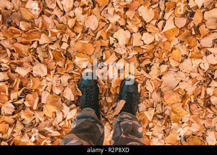 Man standing on heap of dry fallen white birch leaves on cold autumn day - Stock Photo