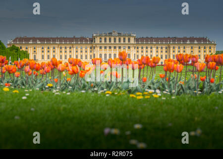 Europe, Austria, Vienna, Schönbrunn Palace - Stock Photo