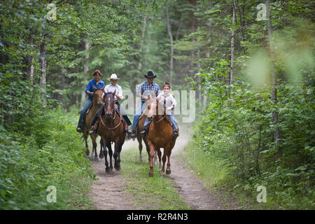 Family on horse trek through forest - Stock Photo