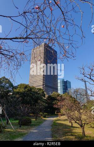 Tokyo, Japan - Jan 4, 2016. Modern buildings with Zen garden in Tokyo, Japan. Tokyo has the largest metropolitan economy in the world. - Stock Photo
