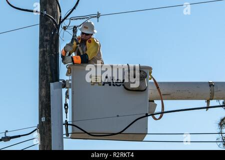 Panama City, FL., Oct. 30, 2018--Linesmen work to restore power in the Florida Panhandle after Hurricane Michael struck on October 10, as a Category 4 hurricane, packing 155 mph winds. FEMA/K.C. Wilsey - Stock Photo