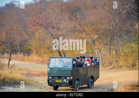 On safari Ranthambore National Park. Tourists in open top truck wait for wildlife sightings. Soft light, colourful jungle background. - Stock Photo