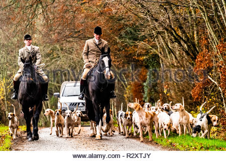Lillisleaf, Hawick, Scottish Borders, UK. 17th November 2018. Huntsman Tim Allen (r) and Whipper In Shaun Anderson of The Duke of Buccleuch Foxhounds, - Stock Photo