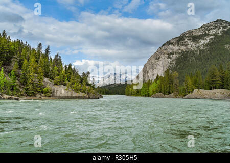 BANFF, AB, CANADA - JUNE 2018: Landscape view of the Bow River, which flows through Banff. - Stock Photo