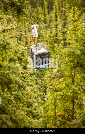 BANFF, AB, CANADA - JUNE 2018: A cable car gondola travelling through the forest on the way to the summit of Sulphur Mountain in Banff. - Stock Photo