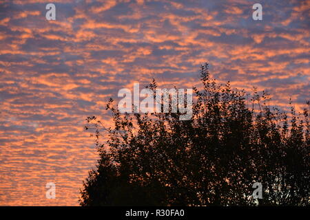 Sonnenaufgang Hintergrund Abendrot - Stock Photo