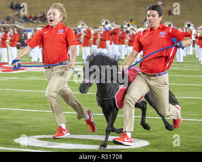 Dallas, Texas, USA. 16th Nov, 2018. SMU's mascot, Peruna IX, runs down the field prior to the start of the NCAA Football game between the SMU Mustangs and the Memphis Tigers at Gerald J. Ford Stadium in Dallas, Texas. Kyle Okita/CSM/Alamy Live News - Stock Photo