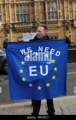 London, UK. 21st November 2018. Continuous Stop Brexit Protest in front of the Houses of Parliament. Credit: Joe Kuis / Alamy Live News