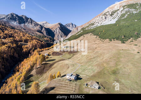 Autumn in mountain, Valley of Federia. Livigno Forest and fields - Stock Photo