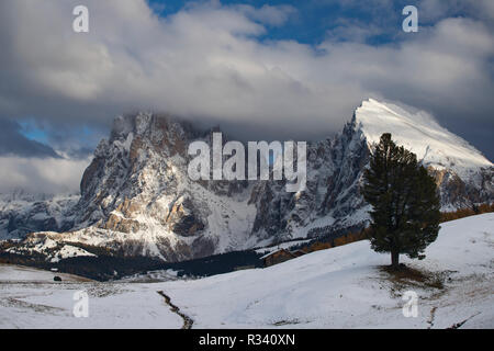 Beautiful view of the Langkofel and Plattkofel (Sassolungo and Sassopiatto) dolomites mountains at the Alpe di Siusi or Seiser Alm in South Tyrol, Ita - Stock Photo