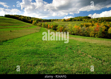 Green grass in the foreground of a large landscape of a pasture or field on a farm in Upper State New York - Stock Photo