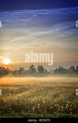 sunrise over the vehnemoor - Stock Photo
