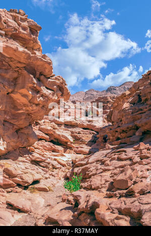 Colored canyon in Nuweiba Dahab - Stock Photo
