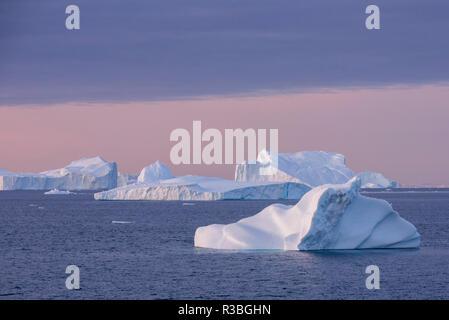 Greenland, Scoresbysund, aka Scoresby Sund, Nordvestfjord. Sunrise over huge icebergs. - Stock Photo