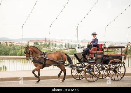 Feira de Cordoba, Cordoba, Andalucia, Spain - Stock Photo