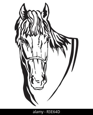 Decorative portrait of beautiful horse with long mane, isolated vector illustration in black color on white background. Image for design and tattoo. - Stock Photo