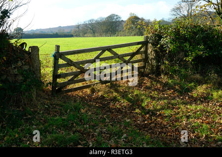 An old Cornish wooden gate - John Gollop - Stock Photo