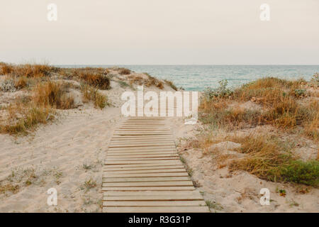 Payment Management Wooden path over the sand of the beach dunes - Stock Photo