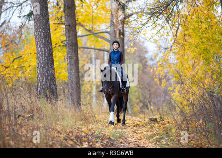 Teenage girl riding horse in autumn park. Happy rider with her stallion on walking - Stock Photo