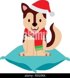 dog with hat on cushion merry christmas - Stock Photo