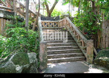 Concrete brick stairway leading up a walkway through the jungle with trees, Dam concrete ladder, Old concrete - Stock Photo