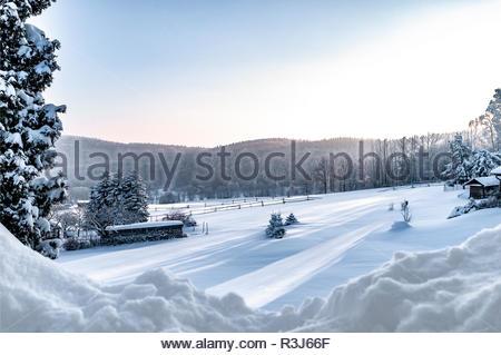 Tiefverschneite Winterlandschaft mit schneebedeckten Bäumen, Haus und Holzstapel - Stock Photo