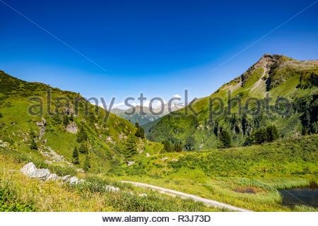 Bergkette mit saftigen Wiesen und großen Bäumen im idyllischen Salzburger Land unter blauen Himmel. - Stock Photo