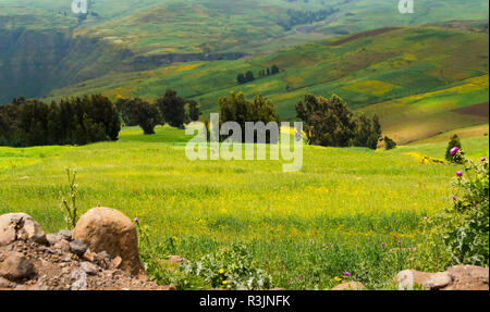 Landscape in Simien Mountain, Ethiopia - Stock Photo