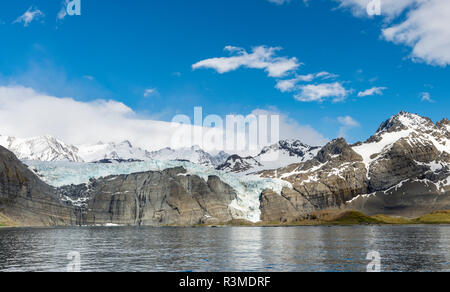Gold Harbour with mighty Bertrab Glacier on South Georgia Island - Stock Photo