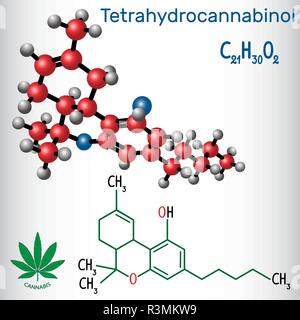 Tetrahydrocannabinol (THC) - structural chemical formula and molecule model. Is the principal psychoactive constituent of cannabis. Vector illustratio - Stock Photo