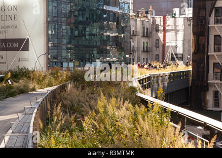 The High Line an urban park on a old elevated railway line, Chelsea, New York City, United States of America.