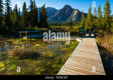 Boardwalk and interpretive signs at Cave and Basin National Historic Site, Banff National Park, Alberta, Canada - Stock Photo